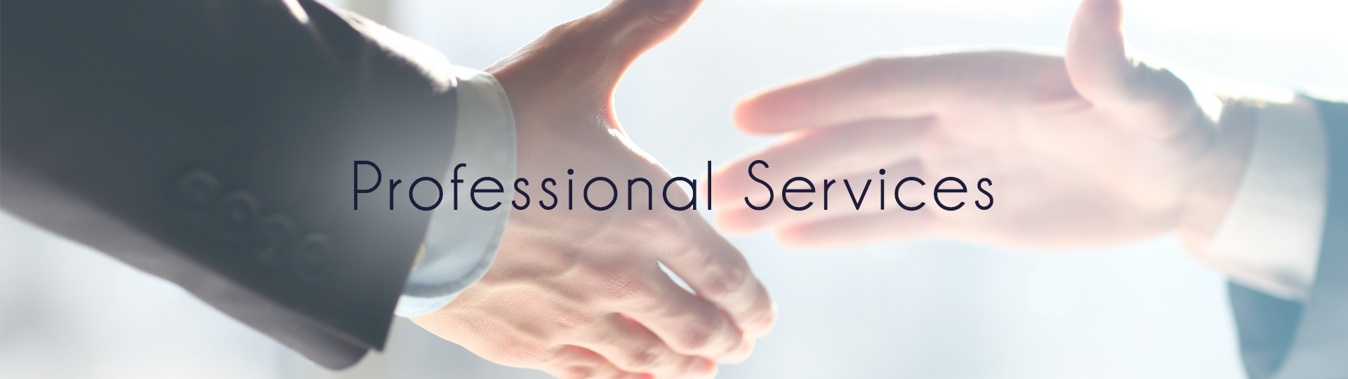 VIManager's Professional Services